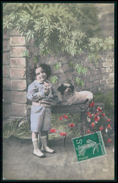 Edwardian Child Boy Terrier? Bichon? Dog original vintage 1910s photo postcard