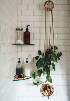 30 Days To A Toxin-Free Home Nesting With Grace Swap Out Harsh, Chemical-Laden Beauty And Home Cleaning Products With These Solutions Made With Naturally Derived Ingredients And Essential Oils. Interior Design Trends, Design Ideas, Dream Apartment, White Studio Apartment, Bedroom Apartment, Apartment Therapy, Aesthetic Rooms, Bathroom Inspiration, Bathroom Inspo