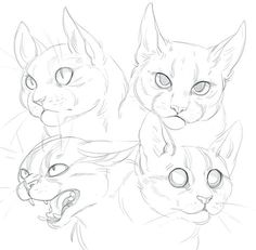Deviantart cat doodle, how to draw cats, cat drawing tutorial, drawing tu. Animal Sketches, Animal Drawings, Art Drawings, Drawing Animals, Pencil Drawings, Cat Sketch, Drawing Sketches, Drawing Tips, Drawing Drawing