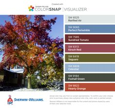 I found these colors with ColorSnap® Visualizer for iPhone by Sherwin-Williams: Rarified Air (SW 6525), Perfect Periwinkle (SW 9065), Sundried Tomato (SW 7585), Kirsch Red (SW 6313), Saguaro (SW 6419), Celestial (SW 6808), Foxhall Green (SW 9184), Hearty Orange (SW 6622).