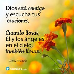 Dios te escucha