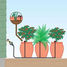 Drip kits for pots Drip Kit Containers automatic watering system Porch Plants, Outdoor Plants, Potted Plants, Water Garden, Garden Pots, Garden Ideas, Patio Ideas, Container Plants, Container Gardening