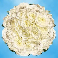 200 Fresh Cut White Roses | Escimo Roses | Fresh Flowers Wholesale Express Delivery | Perfect for Birthdays, Anniversary or any occasion. *** To view further for this item, visit the image link.