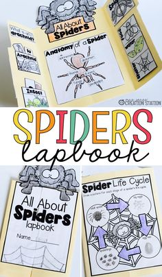 This All About Spiders Interactive Science Lapbook is a great addition to any Preschool, Pre-K, Kind Science Curriculum, Kindergarten Science, Science Lessons, Science Activities, Science Labs, Science Experiments, Plant Lessons, Insect Activities, Elementary Science