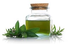 A Smart Oil For An Alert And Sharp Mind: Organic Spearmint Essential Oil!   Tips for Using Essential Oils