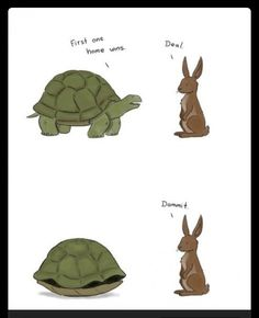 Tortoise and the hare race - Funny Pictures, Funny jokes and so much Memes Humor, Funny Memes, Funny Cute, Haha Funny, Hilarious, Funny Kids, Funny Stuff, Spanish Jokes, Humor Grafico