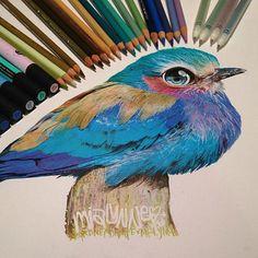 Karla Mialynne e seus desenhos realistas feitos com lápis de cor