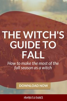 THE WITCH'S GUIDE TO FALL: How to Make the Most of the Fall Season as a Witch. Inside you'll find: 1️⃣Information about two holidays within the season 2️⃣Steps for updating your altar, collecting materials and observing nature 3️⃣Moon calendars for Libra, Scorpio, and Sagittarius Season 4️⃣Ideas for making the most of the zodiac energy during fall