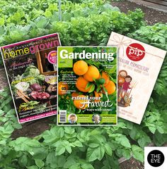 3 gorgeous garden mags to help grow your herbs and veggies! #theeye