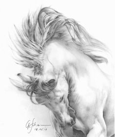 A beautiful rendition - Charcoal by Afshan Horse Drawings, Animal Drawings, Art Drawings, Tattoo Drawings, Painting & Drawing, Knife Painting, Horse Sketch, Horse Artwork, Horse Silhouette