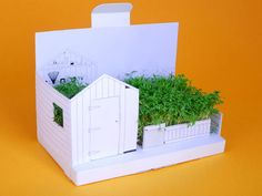 Postcarden Pop-Up Greeting Cards Transform into Mini Living Gardens! | Inhabitat - Sustainable Design Innovation, Eco Architecture, Green Building