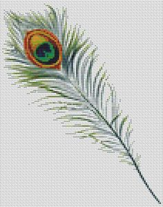 Cross Stitch Borders Available in both Cross Stitch Chart PDF and Cross Stitch Kit. Peacock Feather designed by the Art of Stitch Mini Cross Stitch, Cross Stitch Needles, Cross Stitch Borders, Cross Stitch Animals, Cross Stitch Flowers, Counted Cross Stitch Patterns, Cross Stitch Charts, Cross Stitch Designs, Cross Stitching