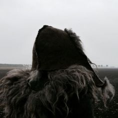 Sheepskin coat | The North Realm