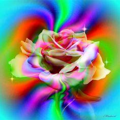 Beautiful Flowers Wallpapers, Beautiful Rose Flowers, Beautiful Gif, Flower Phone Wallpaper, Love Wallpaper, Colorful Wallpaper, Flower Backgrounds, Wallpaper Backgrounds, Rainbow Roses