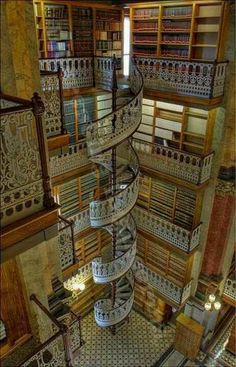 Staircase Spiral Staircase in a HUGE library!Spiral Staircase in a HUGE library! Beautiful Library, Dream Library, Beautiful Stairs, Future Library, Grand Library, Amazing Architecture, Architecture Design, Library Architecture, Stairs Architecture