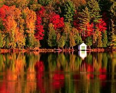 Look at these beautiful autumn leaves on the trees with the reflections in the water and the small white building.... so beautiful.......