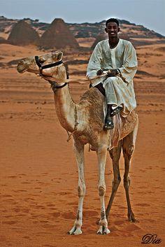Albijrawia -Sudan (black faraohs)