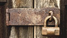 5 Things to Remember When Choosing Cyber Security Insurance Social Media Topics, Social Media Branding, Tin Foil Hat, Good Passwords, Password Security, Security Companies, Computer Security, What You Can Do, Social Media Marketing