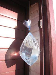 bron: http://www.lne.be/campagnes/milieuzorg-in-de-vlaamse-overheid/werken-aan/afval/afvalacties-1/katten-tegen-ratten