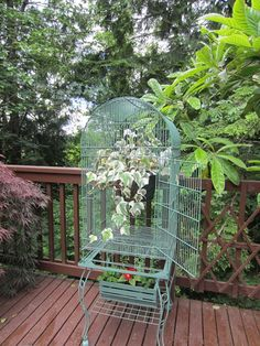 Rustic Garden Decor, Rustic Gardens, Outdoor Gardens, Small Bird Cage, Large Bird Cages, Outdoor Planters, Diy Planters, Outdoor Patios, Garden Crafts