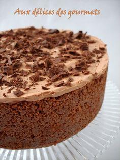 Gâteau glacé au chocolat