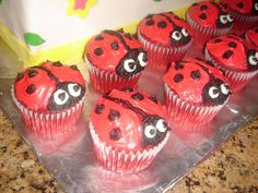 lady bug 1st birthday | Ladybug 1st Birthday Cupcakes | Flickr - Photo Sharing!