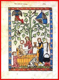 Bany, codice Manesse,1300