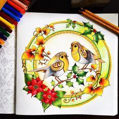 #coloringbook #coloringbooks #coloringbookforadult #coloringbookforadults #adultcoloringbook #artherapy #johannabasford #johannabasfordcoloringbook #johanna_basford #johannabasfordchristmas #christmascoloringbook #christmascolors