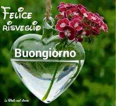 Buongiorno Italian Memes, Italian Quotes, Good Morning Good Night, Instagram, Den, Cristiani, Free Android, Bridge, Facebook