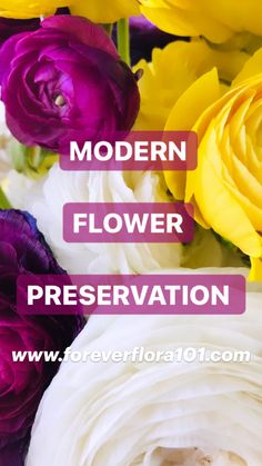 Preserving Flowers, How To Preserve Flowers, Diy Resin Flowers, Paper Flowers, Diy Resin Art, Resin Crafts, Creative Crafts, Creative Ideas, Drying Flowers