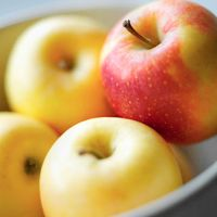 When you think of the fall season, what's the one fruit that comes to mind? Apples, of course! Take advantage of the abundance of apples this month by preparing them with a flavorful, nutritious meal. Here are some delicious ways to enjoy apples this season.