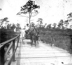 Florida Cracker Quotes   Florida Memory -- Bay County, Florida