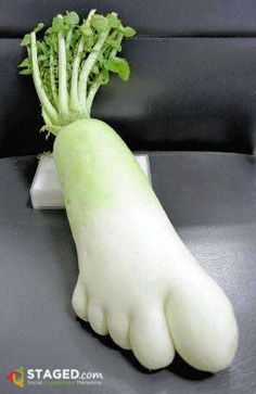 #funny #vegetable