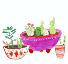 Cactus watercolor: Lindsay Gardner Art & Illustration. www.lindsaygardnerart.com