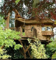 Blue Forest is a company that specializes in building eco-friendly, luxury tree-houses. I have no hope of ever affording one of these, but I hope someone i Beautiful Tree Houses, Cool Tree Houses, House Beautiful, Eco Deco, Luxury Tree Houses, Tree House Designs, Blue Forest, Unusual Homes, Tree Tops