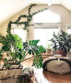 Plant design, garden design, house design, room with plants, house Plant Design, Garden Design, Ficus Lyrata, Room With Plants, Indoor Planters, Indoor Gardening, Ornamental Plants, Simple House, Plant Decor