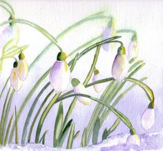 Snowdrops Watercolor greeting Cards Four Blank Notecards, watercolour art cards