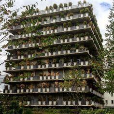 En architecture parfois, tout est une question de pot - The Tower flower was coordinated by the architect #christiandeportzamparc #paris #portzamparc #tower #doulexpression