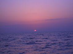 món violeta/mundo violeta