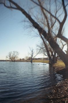 #Lomography is on Pinterest!!    Several of La Sardina's features make her a great choice for doing stereographs. Read on to find out what I did with my La Sardina. www.lomography.co...