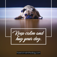 Keep calm and hug your dog. #dogquotes #doglovers #dogs #dogquote #puppies