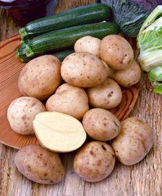pomme de terre shona sarpo patate