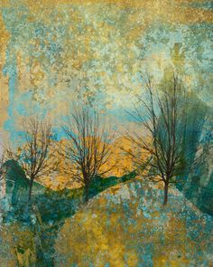 Beautiful monoprinting In the Round: Digital collage © 2013 Liz Ruest Monoprint Artists, Gelli Arts, Collagraph, Tree Images, Gelli Printing, Plate Art, Ipad Art, Contemporary Artists, Abstract Art