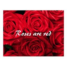 Roses are Red Valentine's Day Postcard - valentines day gifts love couple diy personalize for her for him girlfriend boyfriend