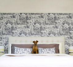 framed wall paper headboard. Cole & Son Cow Parsley wallpaper.