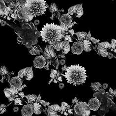 HELLIN Bound With Flowers (Kukin Sidottu) Flowers, Design, Florals, Flower, Blossoms