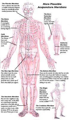 #Acupuncture Meridians