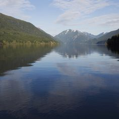 In one long day, you can experience Hurricane Ridge, Lake Crescent, and Hoh Rain Forest