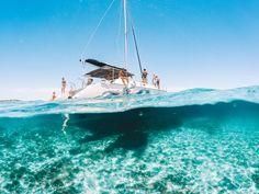 Want to take epic half underwater photos? Find out how with these over / under photography tips & review of the best GoPro dome. #gopro #goprodome #photographytips Gopro Underwater, Underwater Photos, Photography Tips, Boat, Adventure, Travel, Dinghy, Viajes, Boats