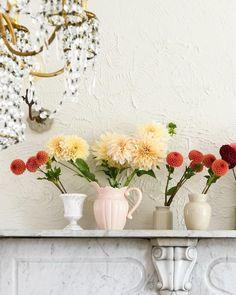 Home Design Decor, House Design, Interior Design, Home Decor, Bottle Wall, Home Again, Glass Bottles, Bloom, Indoor